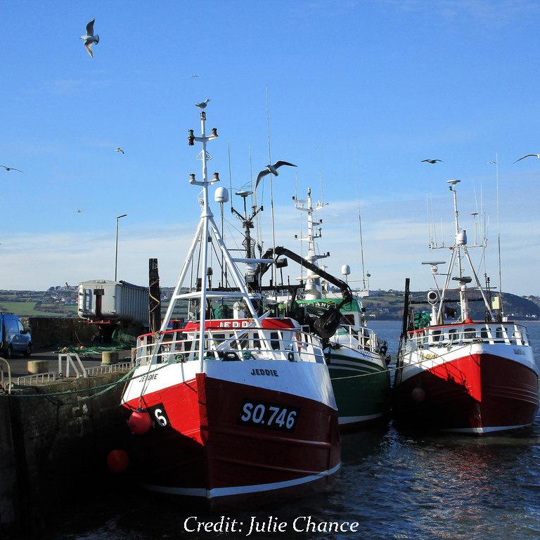 Duncannon Harbour, Co. Wexford - photo by Julie Chance